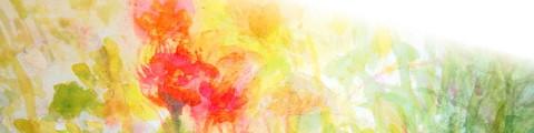 草花ヘッダー1